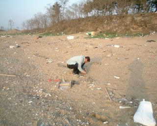 Collecting plastic resin pellets on Korean beach