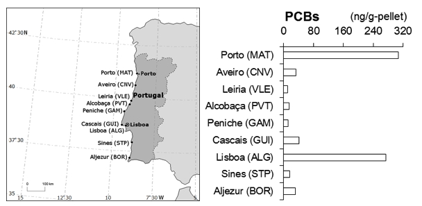 "Our paper on POPs in Portuguese pellets ""Monitoring of a wide range of organic micropollutants on the Portuguese coast using plastic resin pellets"""